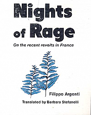 Nights Of Rage: On the Recent Revolts in France
