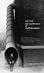 cop-out: the signifigance of Aufhebengate